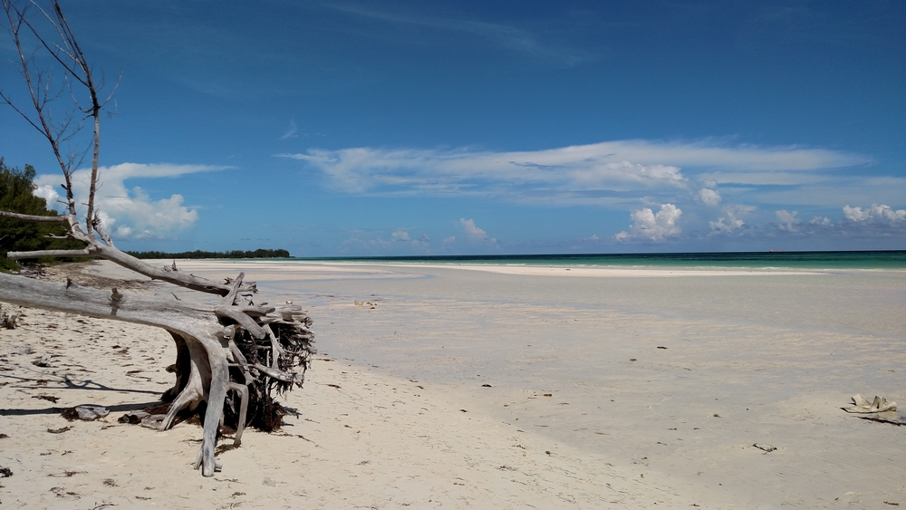 Brooksdale Travel Agency Bahamas Beach Excursion